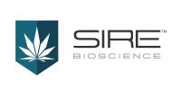 Sire Bioscience Announces Resignation of Director